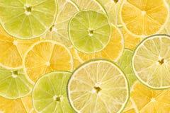 Zitronen-und Kalk-Scheiben-Zusammenfassung stockfotografie