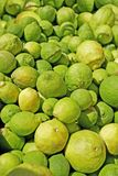 Zitronen und Kalke lizenzfreies stockbild