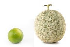 Zitronen-und Kantalupen-Melone Stockbilder