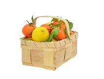 Zitronen und Orangen Stockbild