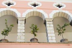 Zitronenbäume in den Töpfen auf Balkon stockbild