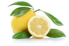 Zitronenfrüchte lokalisiert auf Weiß Stockfotos
