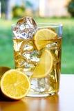 Zitronengetränk auf Gartentabelle Lizenzfreie Stockfotografie