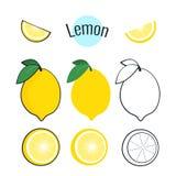 Zitronenvektorsatz Illustration auf Weiß, flaches Design der Karikatur Lizenzfreie Stockbilder