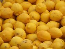 ZitronenZitrusfrucht lizenzfreie stockbilder