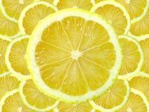 Zitronescheibe Stockfoto