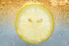 Zitronescheibe Stockbild