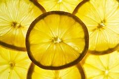 Zitronescheiben Lizenzfreie Stockbilder