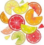 Zitrusfrüchte in einem Glas Zitronenkalk Stockfotos