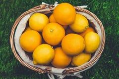 Zitrusfrüchte im Korb Orangen und Zitronen Lizenzfreie Stockbilder