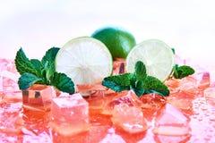 Zitrusfrüchte: Kalk mit Minzen- und Eiswürfeln auf einem korallenroten Hintergrund Frische Sommer-Früchte stockfoto