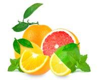 Zitrusfrüchte und Minze lizenzfreie stockfotografie