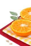 Zitrusfrucht. Lizenzfreie Stockbilder