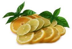 Zitrusfrucht Lizenzfreies Stockfoto