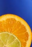 Zitrusfrucht 3 lizenzfreie stockfotos