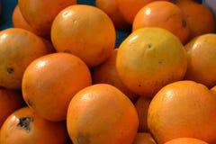 zitrusfrucht Lizenzfreie Stockbilder