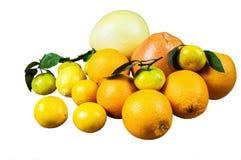 Zitrusfrucht auf weißem Hintergrund Lizenzfreies Stockbild