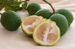Zitrusfrucht aurantium Linn, saure Orange oder Pomeranze lizenzfreie stockfotografie
