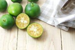 Zitrusfrucht Calamondin Stockfotografie