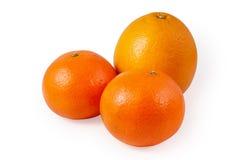 Zitrusfrucht drei Stockfotos