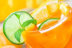 Zitrusfrucht-Getränk stockfotografie