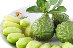 Zitrusfrucht hystrix Stockfotos