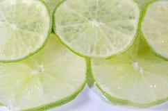 Zitrusfrucht-Kalk auf weißem Hintergrund Stockfoto