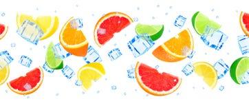 Zitrusfrucht mit Eis Stockfoto