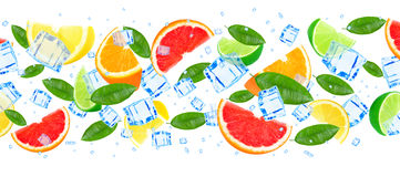 Zitrusfrucht mit Eis Stockfotografie