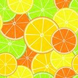 Zitrusfrucht-nahtloses Muster Neue saftige Orangen-, Zitronen-, Pampelmusen- und Kalkscheiben Blaues Meer, Himmel u Lizenzfreie Stockfotos