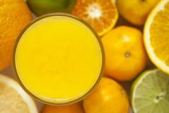 Zitrusfrucht-Saft Lizenzfreies Stockfoto