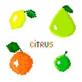 Zitrusfrucht-Satz Stock Abbildung
