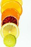 Zitrusfrucht-Scheiben Stockfoto