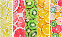 Zitrusfrucht schneidet frisches Stockfoto