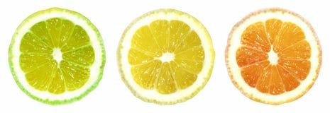 Zitrusfrucht Trafficlight auf weißem Hintergrund Stockbilder