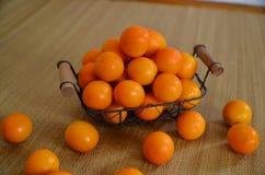 Zitrusfrucht und Hintergrund für Fotografie Lizenzfreie Stockfotos