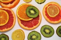 Zitrusfrucht- und Kiwischeiben auf einem weißen Hintergrund Die Ansicht von der Oberseite lizenzfreie stockfotos