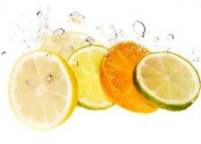 Zitrusfrucht und Luftblase stockbild