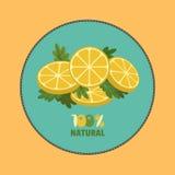 Zitrusfrucht-Zitrone Stockfotos