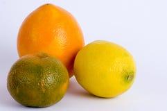 Zitrusfruchtdreiergruppe Stockfotografie