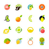 Zitrusfruchtfamilie - Zitrone, Orange, Kalk, Tangerine Lizenzfreies Stockfoto