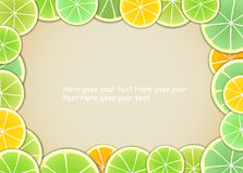 Zitrusfruchtfeld Stockbild