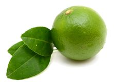 Zitrusfruchtkalk-Fruchtsegment Stockfoto