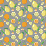 Zitrusfruchtmuster vektor abbildung