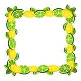Zitrusfruchtrahmendekoration Lizenzfreies Stockfoto