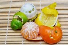 Zitrusfruchtschale Stockfotografie