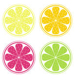 Zitrusfruchtscheiben Stockfotos