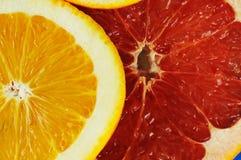 Zitrusfruchtscheiben. lizenzfreie stockfotos