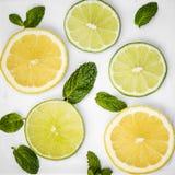 Zitrusfruchtscheiben Lizenzfreie Stockbilder