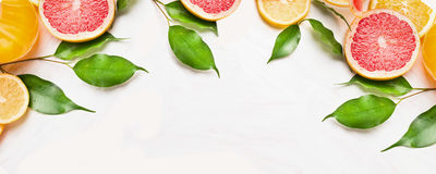 Zitrusfruchtscheiben der Orange, der Zitrone und der Pampelmuse mit grünen Blättern, Fahne für Website Stockfotos